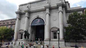 Musée New York