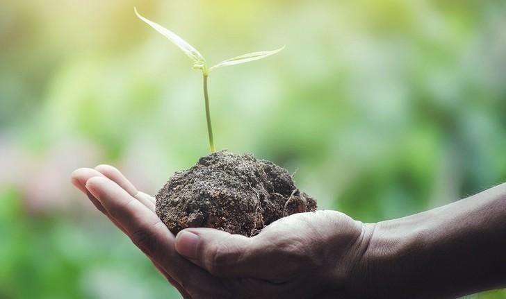 Réduisez votre empreinte écologique : nos 5 conseils